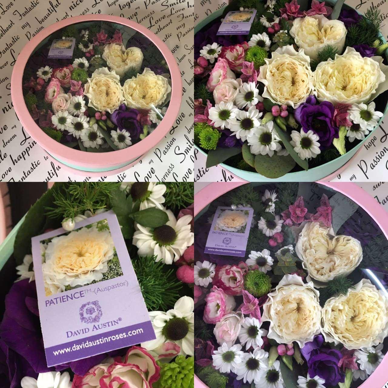 Цветы-в-коробках-13