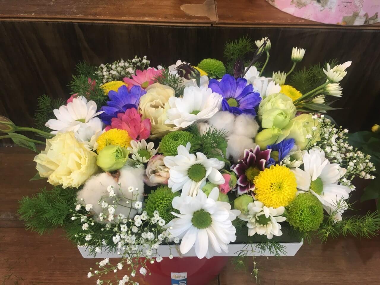 Цветы-в-коробках-17