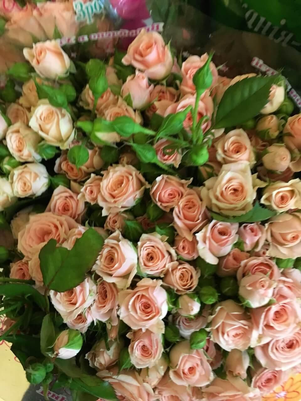 Цветы-15