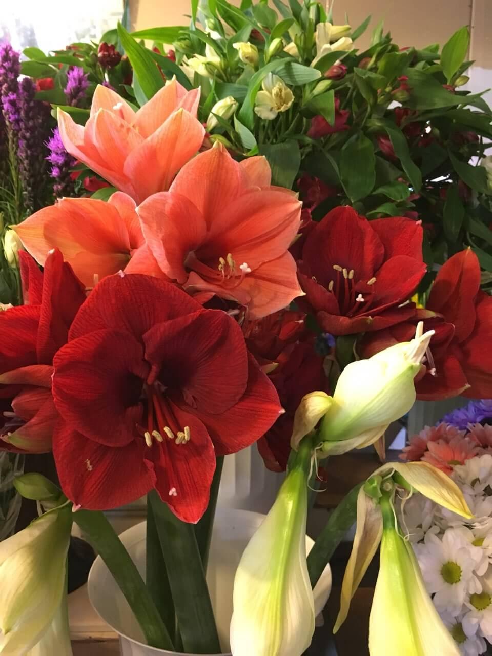 Цветы-4