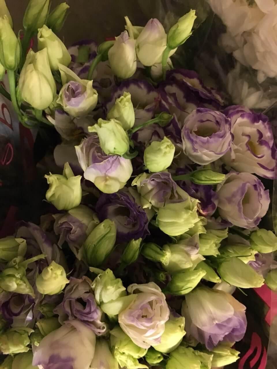Цветы-7