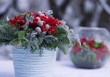 Зимние цветочные композиции