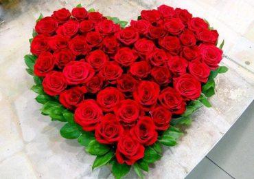 розы на позняках, купить цветы на позняказ, цветочный рай позняки