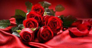 Розы на позняках