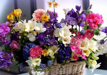 купить цветы на позняках, цветочный рай, цветы и подарки