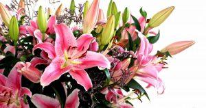 лилии, букет лилий, цветочные композиции купить, купить лилии позняки