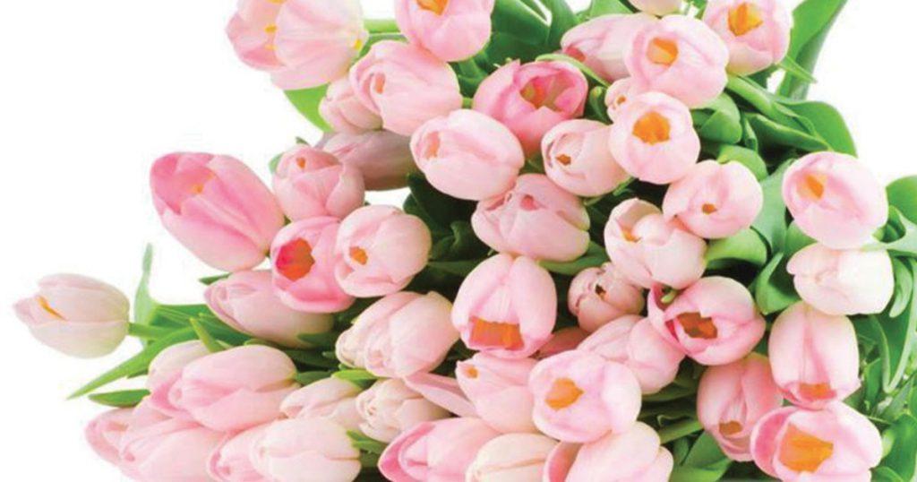 Цветы для Водолея