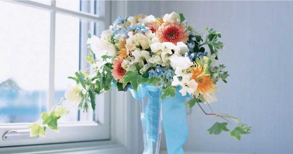 Купить цветы для интерьеров
